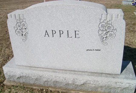 APPLE, MONUMENT - Champaign County, Ohio   MONUMENT APPLE - Ohio Gravestone Photos