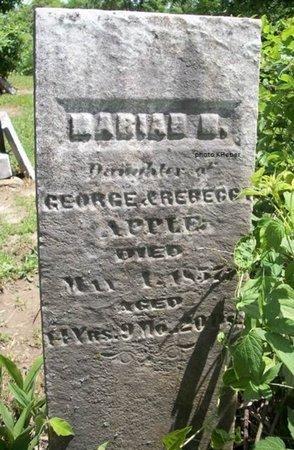 APPLE, MARIAH - Champaign County, Ohio | MARIAH APPLE - Ohio Gravestone Photos