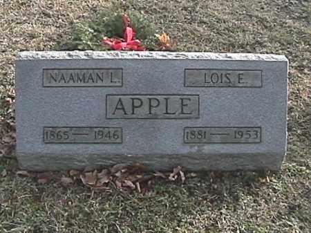 APPLE, LOIS ELVA - Champaign County, Ohio | LOIS ELVA APPLE - Ohio Gravestone Photos