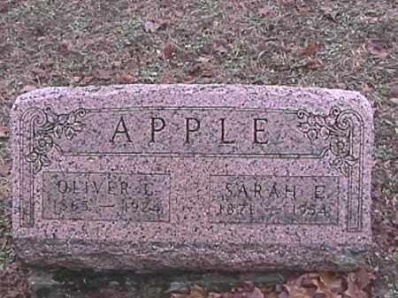 APPLE, SARAH E. - Champaign County, Ohio   SARAH E. APPLE - Ohio Gravestone Photos