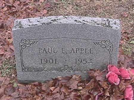 APPLE, PAUL E. - Champaign County, Ohio   PAUL E. APPLE - Ohio Gravestone Photos