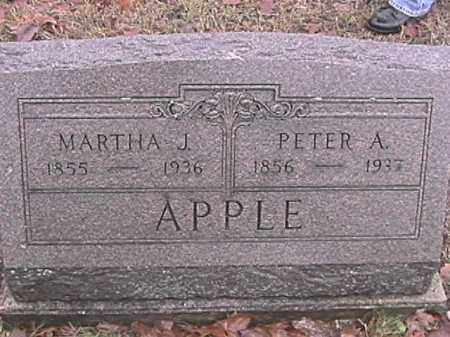APPLE, MARTHA J. - Champaign County, Ohio | MARTHA J. APPLE - Ohio Gravestone Photos