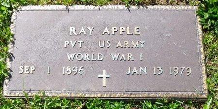 APPLE, RAYMOND HARLEY - Champaign County, Ohio | RAYMOND HARLEY APPLE - Ohio Gravestone Photos