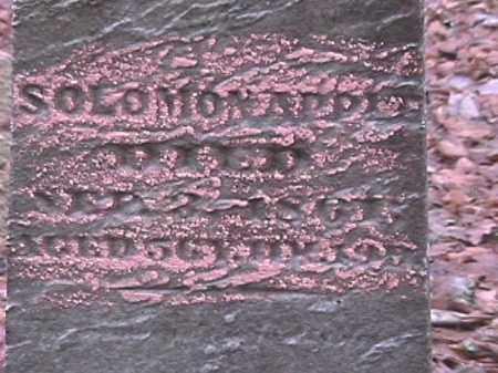 APPLE, SOLOMON - Champaign County, Ohio | SOLOMON APPLE - Ohio Gravestone Photos