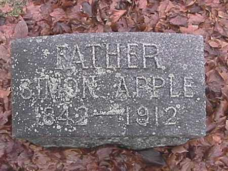 APPLE, SIMON - Champaign County, Ohio | SIMON APPLE - Ohio Gravestone Photos
