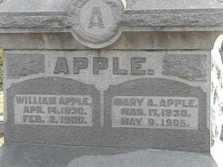 APPLE, MARY ANN - Champaign County, Ohio | MARY ANN APPLE - Ohio Gravestone Photos