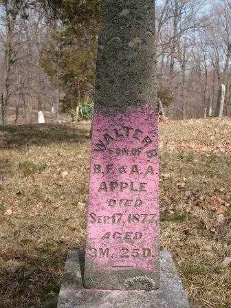 APPLE, WALTER B. - Champaign County, Ohio | WALTER B. APPLE - Ohio Gravestone Photos