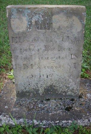 FYE/FOY BAKER, ELIZA - Champaign County, Ohio | ELIZA FYE/FOY BAKER - Ohio Gravestone Photos