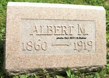 BERRY, ALBERT M - Champaign County, Ohio | ALBERT M BERRY - Ohio Gravestone Photos