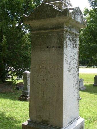 BERRY, ANGELINE - Champaign County, Ohio | ANGELINE BERRY - Ohio Gravestone Photos