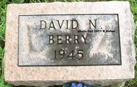 BERRY, DAVID NEAL - Champaign County, Ohio   DAVID NEAL BERRY - Ohio Gravestone Photos