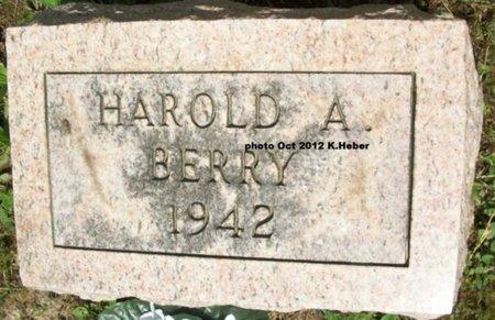 BERRY, HAROLD ALBERT - Champaign County, Ohio | HAROLD ALBERT BERRY - Ohio Gravestone Photos