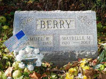 BERRY, SAMUEL B. - Champaign County, Ohio | SAMUEL B. BERRY - Ohio Gravestone Photos