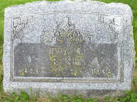 BUSH, EVA G - Champaign County, Ohio | EVA G BUSH - Ohio Gravestone Photos