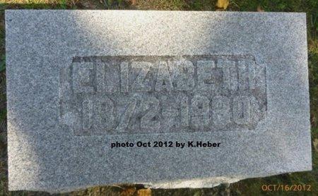 BUTCHER, ELIZABETH - Champaign County, Ohio | ELIZABETH BUTCHER - Ohio Gravestone Photos