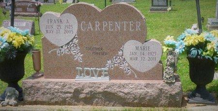 CARPENTER, JEANNE MARIE - Champaign County, Ohio | JEANNE MARIE CARPENTER - Ohio Gravestone Photos
