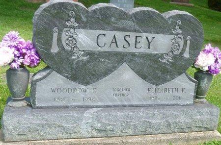 CASEY, ELIZABETH ELLEN - Champaign County, Ohio | ELIZABETH ELLEN CASEY - Ohio Gravestone Photos