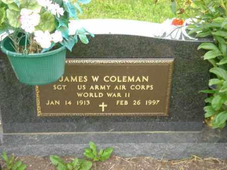 COLEMAN, JAMES W. - Champaign County, Ohio | JAMES W. COLEMAN - Ohio Gravestone Photos