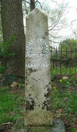 ECKLES, JAMES - Champaign County, Ohio | JAMES ECKLES - Ohio Gravestone Photos