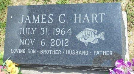 HART, JAMES CARL - Champaign County, Ohio | JAMES CARL HART - Ohio Gravestone Photos