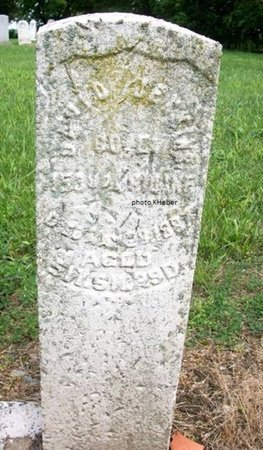 JENKINS, DAVID - Champaign County, Ohio | DAVID JENKINS - Ohio Gravestone Photos