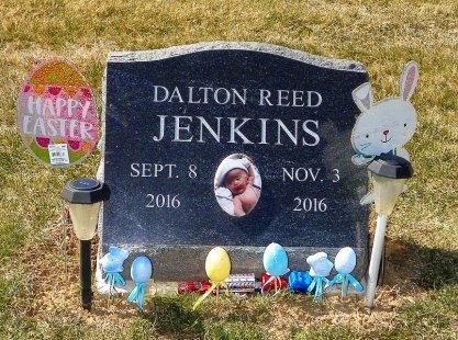 JENKINS, DALTON REED - Champaign County, Ohio   DALTON REED JENKINS - Ohio Gravestone Photos