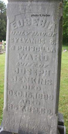 JENKINS, EUSEBIA - Champaign County, Ohio | EUSEBIA JENKINS - Ohio Gravestone Photos