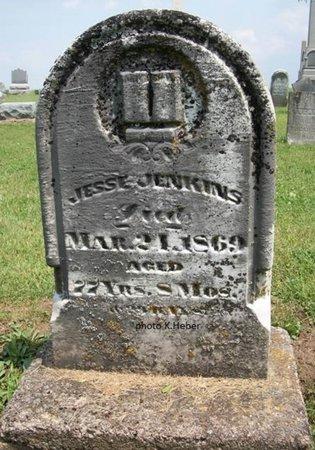 JENKINS, JESSE - Champaign County, Ohio | JESSE JENKINS - Ohio Gravestone Photos
