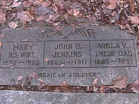 JENKINS, VIOLA V. - Champaign County, Ohio | VIOLA V. JENKINS - Ohio Gravestone Photos