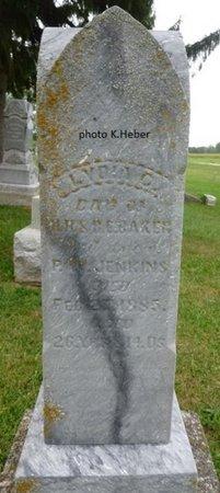 "JENKINS, LYDIA C ""LIDDY"" - Champaign County, Ohio   LYDIA C ""LIDDY"" JENKINS - Ohio Gravestone Photos"