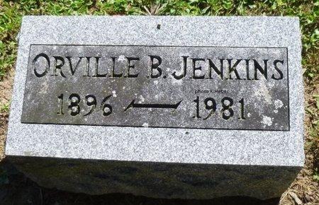 JENKINS, ORVILLE BRYAN - Champaign County, Ohio | ORVILLE BRYAN JENKINS - Ohio Gravestone Photos