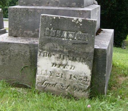 JENKINS, SUSANAH - Champaign County, Ohio | SUSANAH JENKINS - Ohio Gravestone Photos