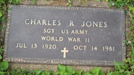 JONES, CHARLES R - Champaign County, Ohio | CHARLES R JONES - Ohio Gravestone Photos