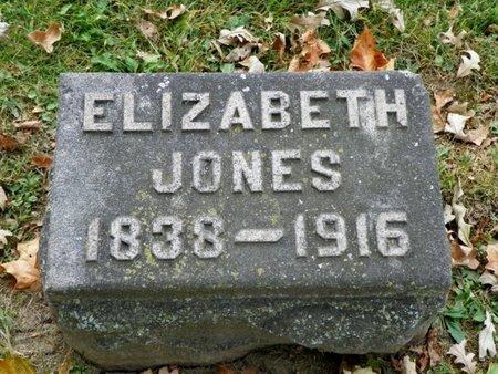 JONES, EIZABETH - Champaign County, Ohio | EIZABETH JONES - Ohio Gravestone Photos