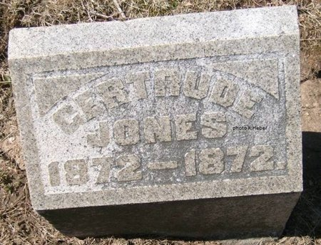 JONES, GERTRUDE MARY - Champaign County, Ohio | GERTRUDE MARY JONES - Ohio Gravestone Photos