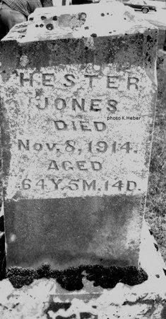 JONES, HESTER - Champaign County, Ohio | HESTER JONES - Ohio Gravestone Photos