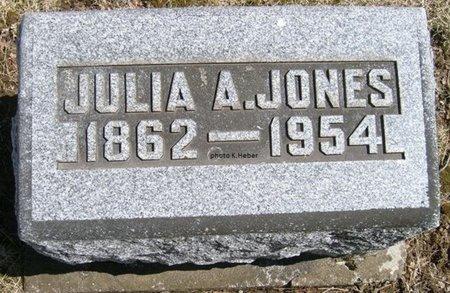 JONES, JULIA ANNA - Champaign County, Ohio | JULIA ANNA JONES - Ohio Gravestone Photos