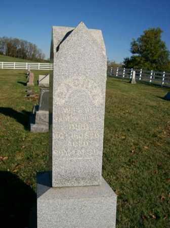JONES, RACHEL - Champaign County, Ohio | RACHEL JONES - Ohio Gravestone Photos