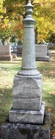 "JONES, SARAH E ""SALLIE"" - Champaign County, Ohio | SARAH E ""SALLIE"" JONES - Ohio Gravestone Photos"