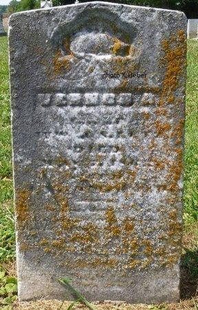 LUTZ, VERNON A - Champaign County, Ohio | VERNON A LUTZ - Ohio Gravestone Photos