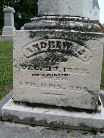 REAM, ANDREW J - Champaign County, Ohio | ANDREW J REAM - Ohio Gravestone Photos