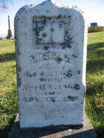 STOKES, WILLIAM - Champaign County, Ohio | WILLIAM STOKES - Ohio Gravestone Photos