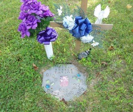 TAYLOR, CHARLES WILLIAM - Champaign County, Ohio   CHARLES WILLIAM TAYLOR - Ohio Gravestone Photos