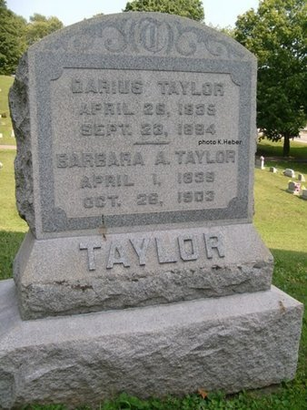 TAYLOR, DARIUS - Champaign County, Ohio | DARIUS TAYLOR - Ohio Gravestone Photos