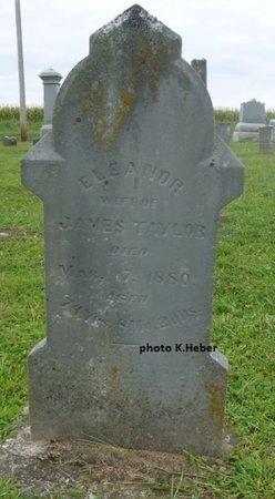TAYLOR, ELEANOR - Champaign County, Ohio | ELEANOR TAYLOR - Ohio Gravestone Photos