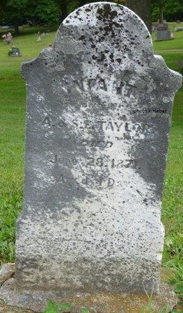 TAYLOR, INFANT - Champaign County, Ohio | INFANT TAYLOR - Ohio Gravestone Photos