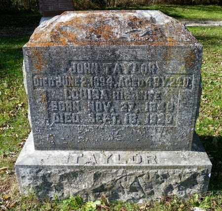 TAYLOR, JOHN - Champaign County, Ohio | JOHN TAYLOR - Ohio Gravestone Photos