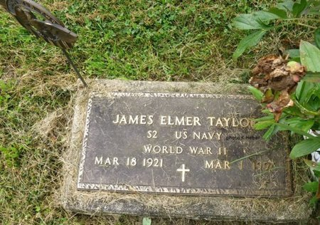 TAYLOR, JAMES ELMER - Champaign County, Ohio | JAMES ELMER TAYLOR - Ohio Gravestone Photos