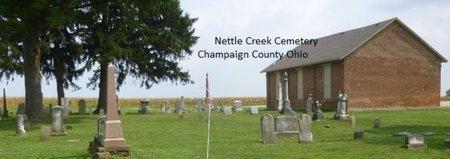 TAYLOR, MICHAEL - Champaign County, Ohio | MICHAEL TAYLOR - Ohio Gravestone Photos