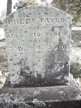 TAYLOR, PHOEBE - Champaign County, Ohio | PHOEBE TAYLOR - Ohio Gravestone Photos